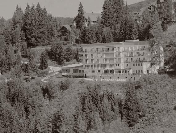 sonen hotel